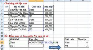 Cách sử dụng hàm Countif để đếm có điều kiện